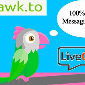 Tawk to Review FREE Live Chat Service For Your Website - Spencer Coffman