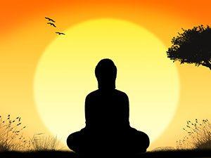 stress flow default mode network meditate spencer coffman